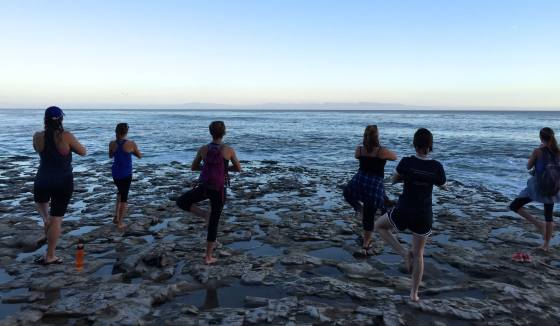 6 women doing yoga on the beach