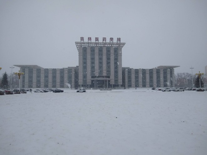 a building with big chinese characters on top and everything is covered in falling snow